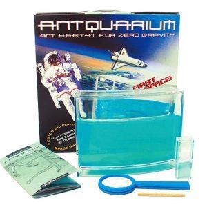 Antquarium