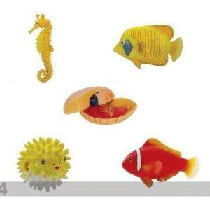Besse 3d Palapeli Korallikalat