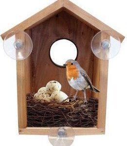 Birdwatcha Discovery Bird's Nest