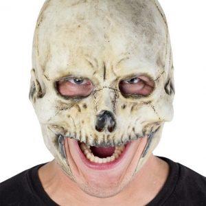 Chinless Skull