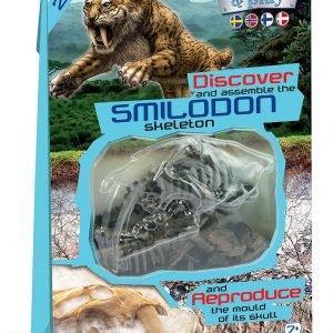 Clementoni Dino Fossil Smilodon