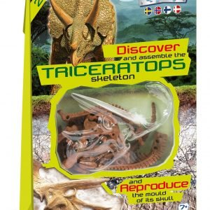 Clementoni Dino Fossil Triceratops