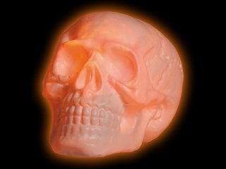 Giant white disco skull