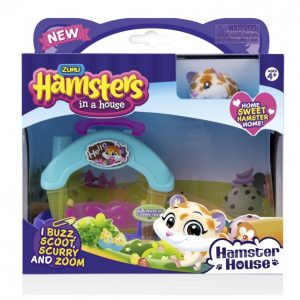 Hamsters In A House Hamsteri Ja Leikkisetti