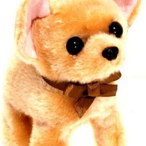 Interaktiivinen koira Chihuahua Ruskea