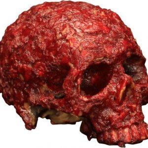 Naamari Blood Scab Resin Skull