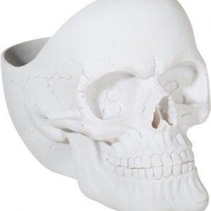 Pääkallokulho valkoinen