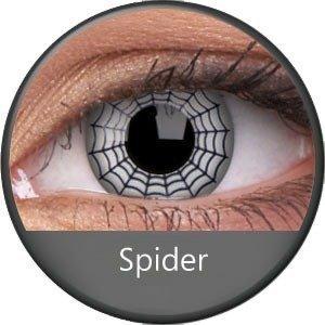 Phantasee Spider