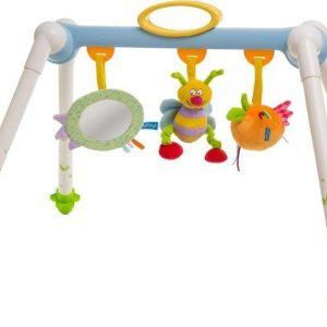Taf Toys Kannettava vauvajumppa Take-to-Play Baby Gym