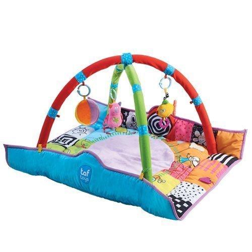 Taf Toys Leikkimatto Newborn Gym
